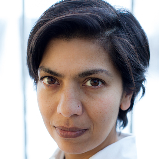 Seema Goel, Author at Faculty of Science